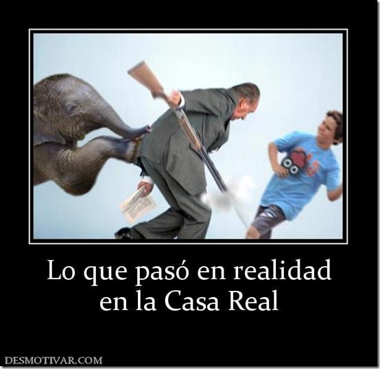 rey caza elefante (2)