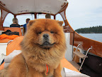 I am such a fine first mate!  Don't you agree?