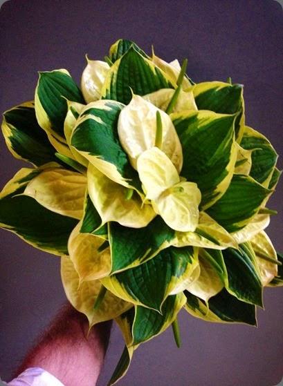arm epoch floral 1004935_10151759003282010_47901559_n