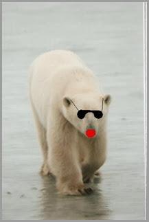 taylor p. bear