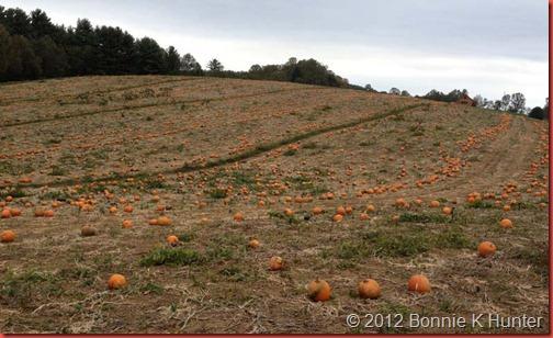 VA_Oct2012 062