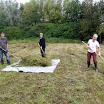 natuurbeheer in de Kleiputten sept 2011 hooi oprapen.JPG