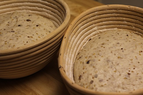 sourdough-seed-bread_1696
