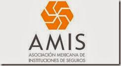 asociacion mexicana de instituciones de seguros amis.org.mx visita