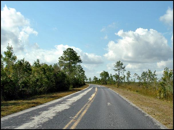 19 - 38 mile drive through Everglades to Flamingo