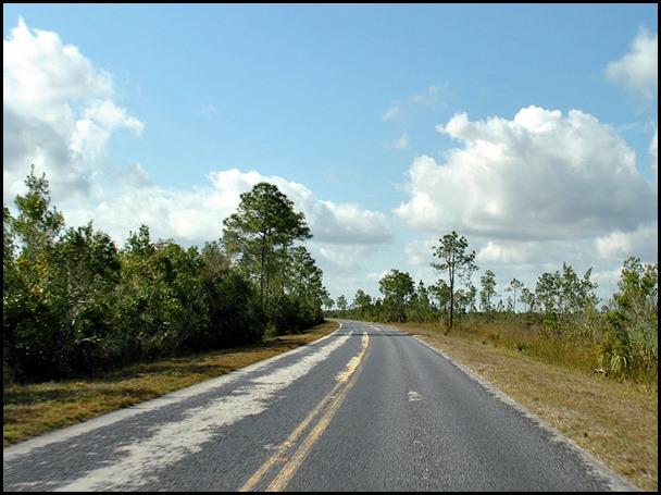 19 - 38 mile drive through Everglades to Flamingo