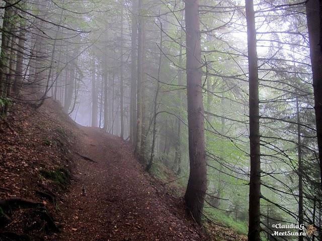 Bucegi-Morar-Cerb_534.jpg