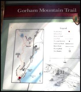 Gorham Mountain Hike 018
