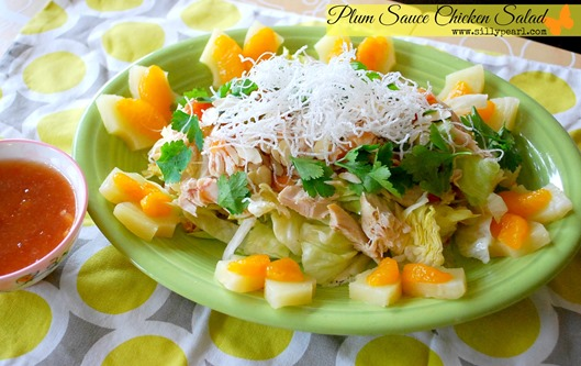 Plum Sauce Chicken Salad Recipe by The Silly Pearl