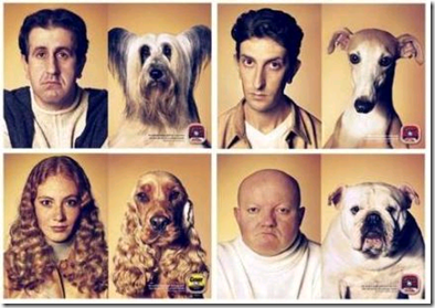dog look like owners ad campaign