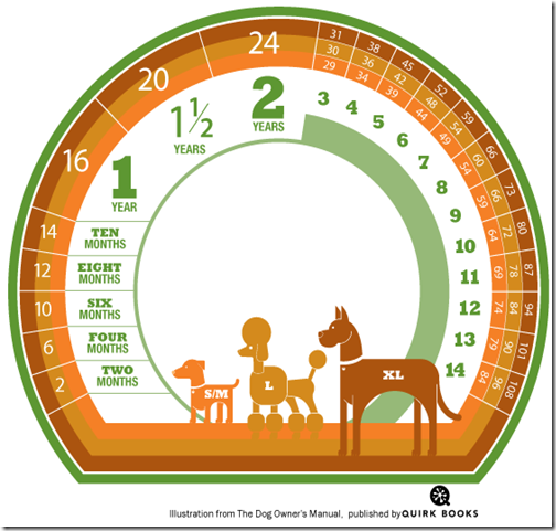 Tabela idade canina.