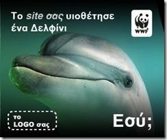 dolphin-dummy