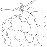 grapes-coloring-page-6.jpg