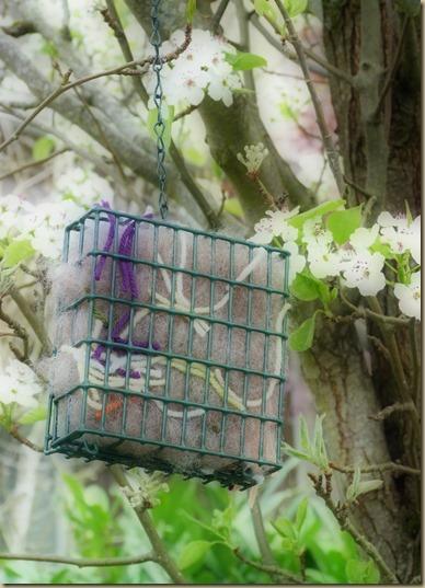 Bird Nesting Supplies 4