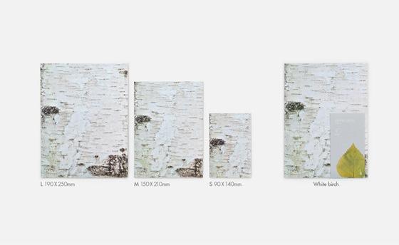 white-birch4-1