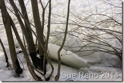 Ice on the Susquehanna River, 2/2014, by Sue Reno, Image 10