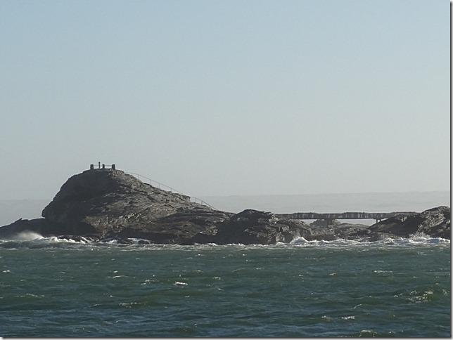 Halifax_Island (121)