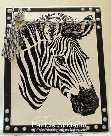 Zebra 2013