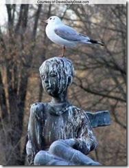 Estatua e pombo