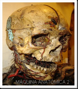 MAQUINA ANATÓMICA 2