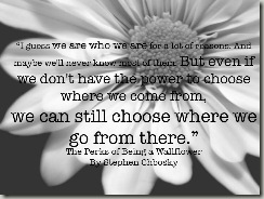 the-perks-of-being-a-wallflower-by-stephen-chbosky