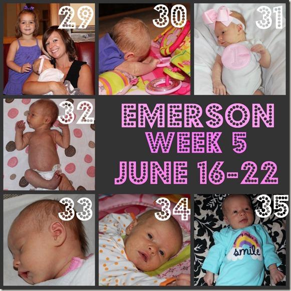 Emerson Week 5