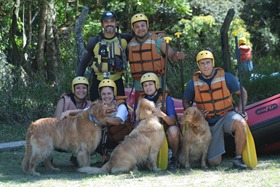 Pets Adventure 8 (53)