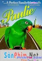 Chú Vẹt Paulie