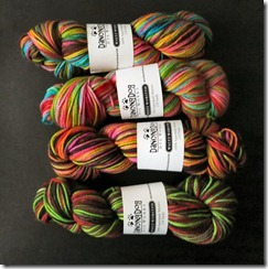 Dancing Dog Dyeworks Waltz Worsted 1