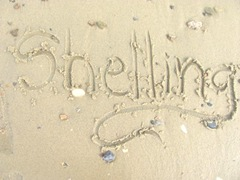 Cape Cod writing in the sand shelling