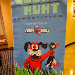 I love DUCK HUNT for NES in Toronto, Ontario, Canada