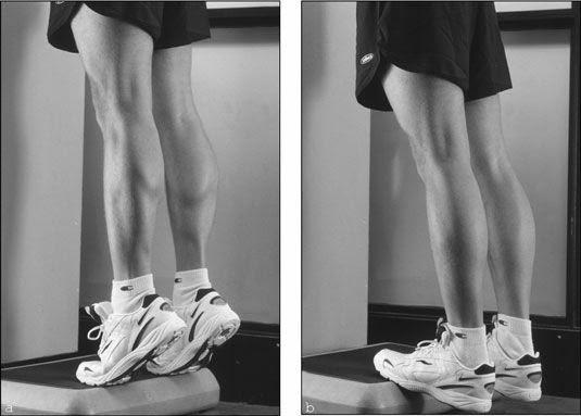 standing calf raise machine.jpg
