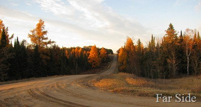 Joe Macks road Tamaracks on Oct 23