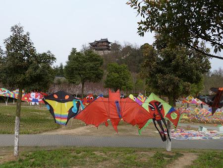 Zmee de vanzare in Zhengjian