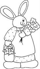 coelho (1)