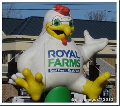Big cluck 0113 (3)