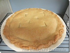 Apple Raisin Pie - The Backyard Farmwife