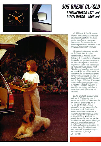 Peugeot_305_Break_1986 (7).jpg