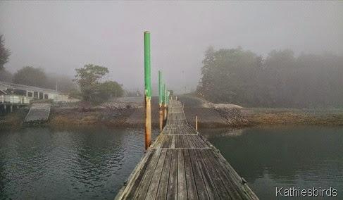 7. boat dock