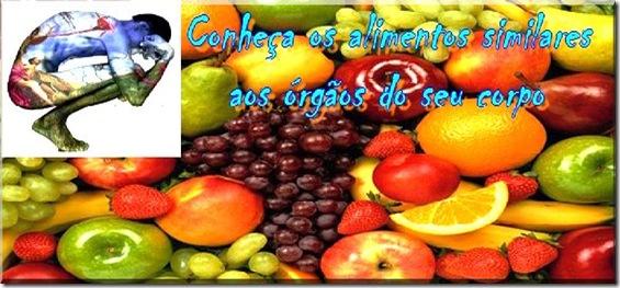 alimentos  simililares ao corpo