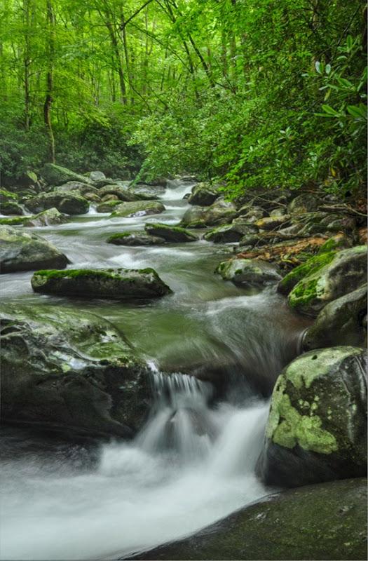 porters creek f-5394
