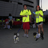 Pet Express Doggie Run 2012 Philippines. Jpg (7).JPG