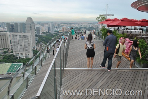 Marina Bay Sky Park and Infinity Pool13
