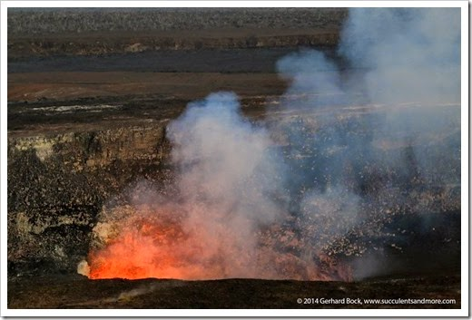 140724_HawaiiVolcanoesNP_0247