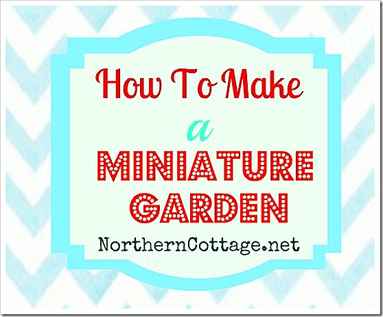 how to make a mini garden @ northern cottage