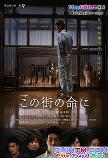 Cuộc Sống Ở Một Thị Trấn - Konomachi no inochi ni Tập HD 1080p Full