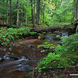 Small Creek in the Porcupine Mountains / Taken just after a nice rain / Porcupine Mountains State Park / Upper Michigan