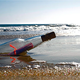 Message in a Bottle 1 by Richard Timothy Pyo - Artistic Objects Other Objects
