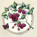 предпросмотр. таблица цветов. smorodina2410.  Автор схемы.  0. оригинал.  Размеры: 190 x 188 крестов Картинки.