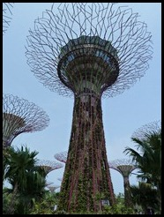 Singapore, Gardens by the Bay, 23 September 2012 (6)